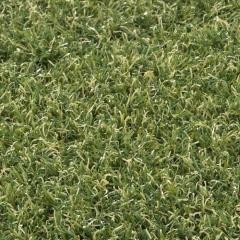 Umělá tráva Arcadia 6909