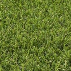 Umělá tráva Cypress point 7025